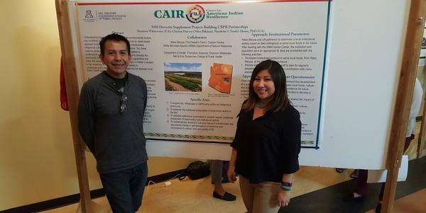 Collaborative project presenters